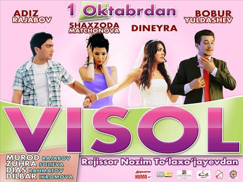 Постер фильма Visol